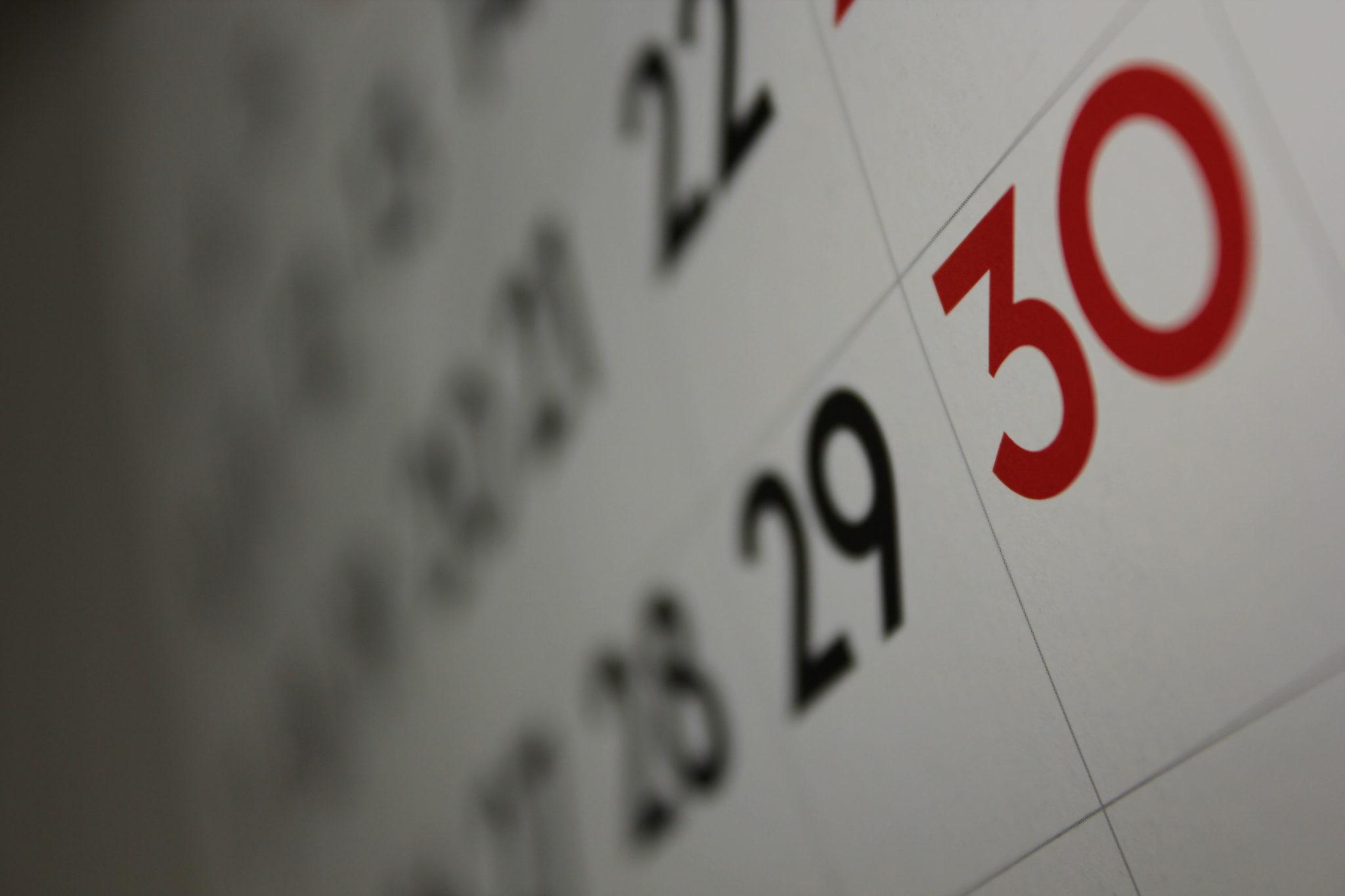 Calendar - © Dafne Cholet 2011-01-20